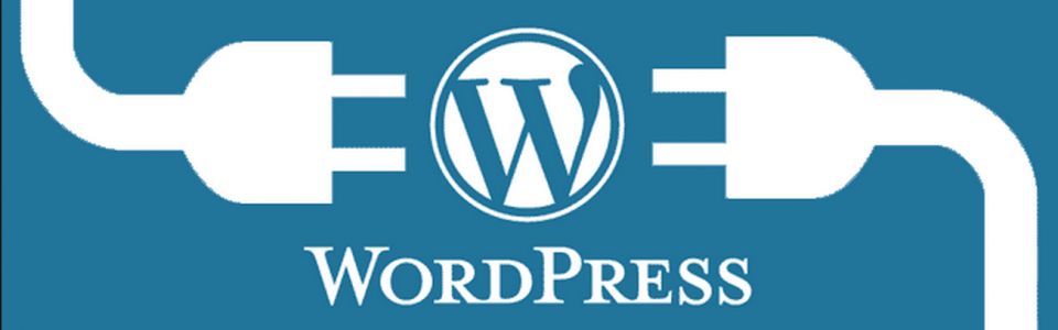 Top 5 Essential WordPress Plugins